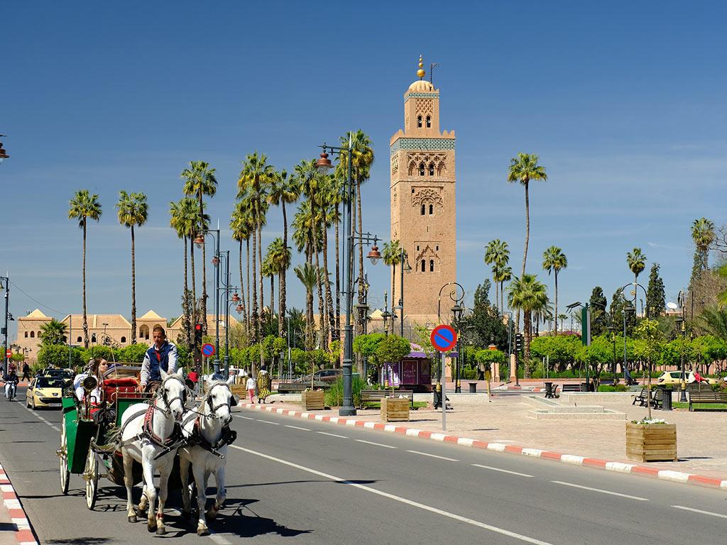 Marrakech calèche et dromadaire